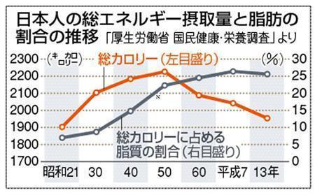 摂取エネルギー 図解・グラフ・一覧・比較の画像とか