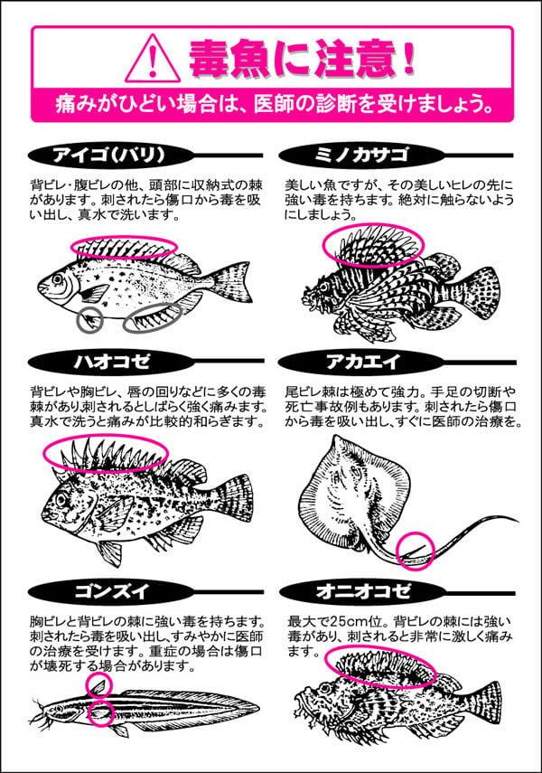 毒魚 図解・グラフ・一覧・比較の画像とか