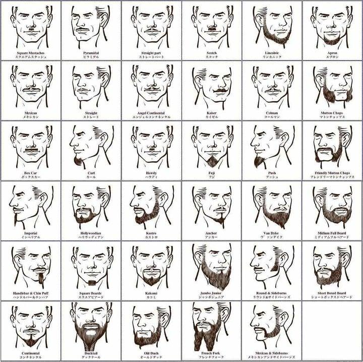 髭の名前 図解・グラフ・一覧・比較の画像とか