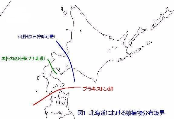 北海道における動植物分布境界 図解・グラフ・一覧・比較の画像とか