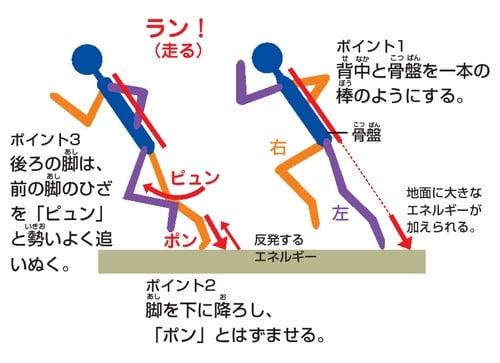 走り方 図解・グラフ・一覧・比較の画像とか