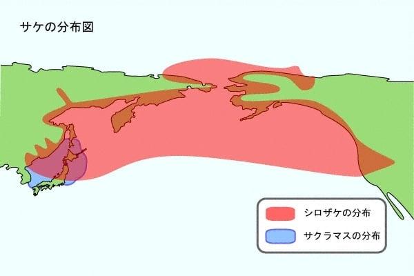 サケの分布図 図解・グラフ・一覧・比較の画像とか