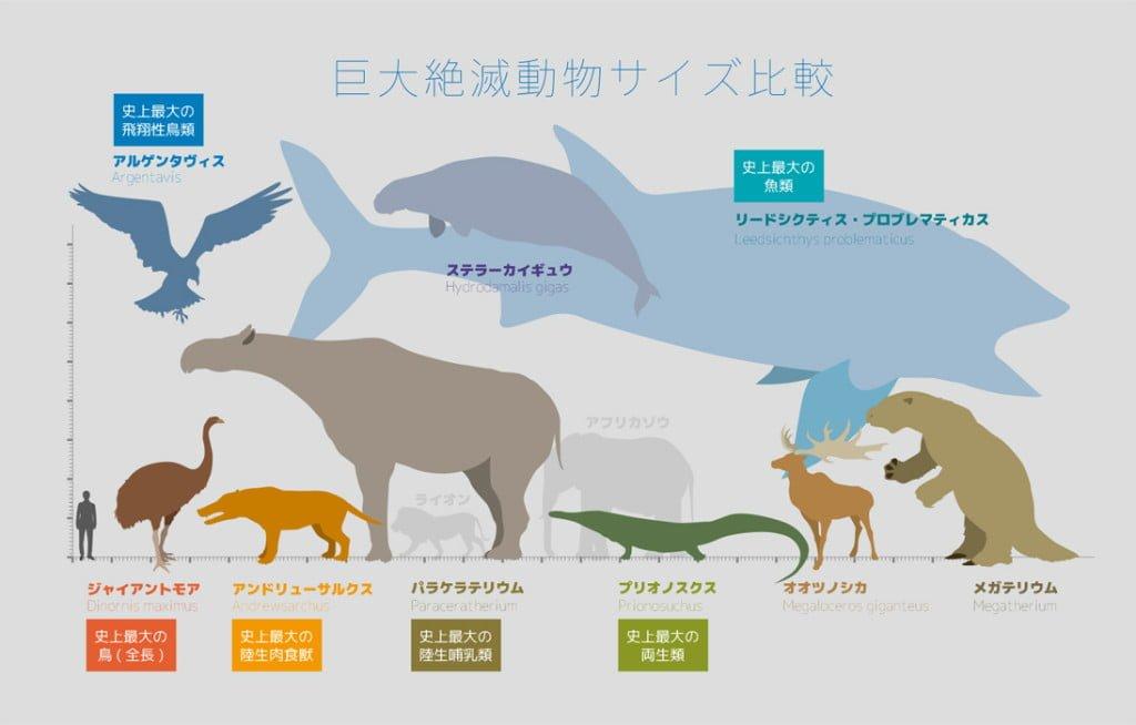 巨大絶滅動物サイズ比較 図解・グラフ・一覧・比較の画像とか