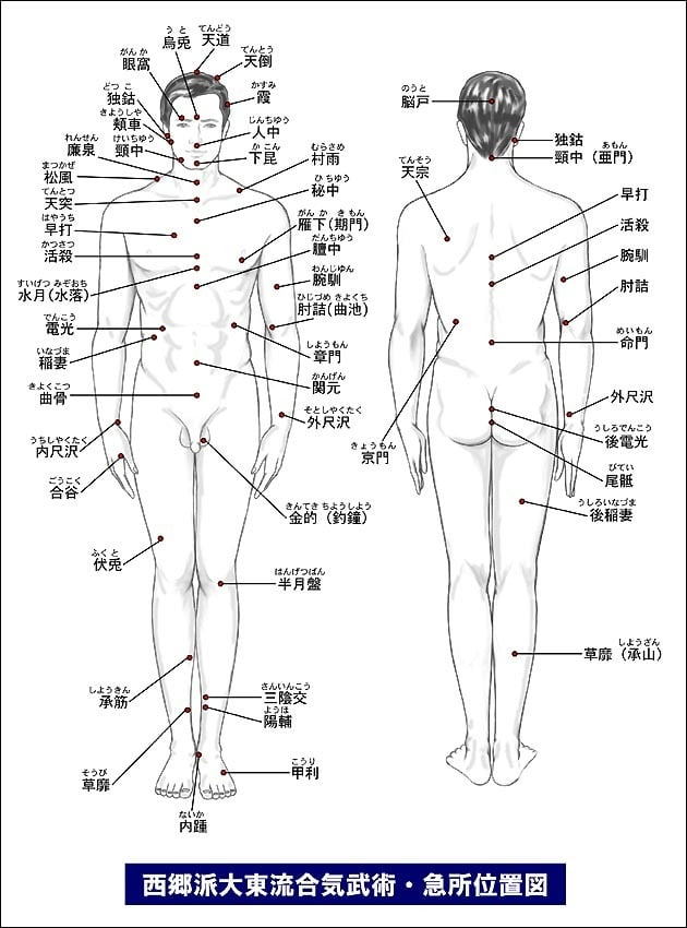 西郷派大東流合気武術・急所位置図 図解・グラフ・一覧・比較の画像とか