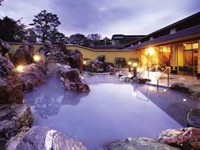 金太郎温泉カルナの館
